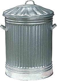 Dustbin man